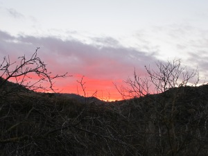 sunset2 5-2-15