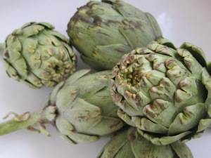 artichokes, ready to prepare 18-4-15