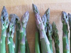asparagus 6-4-15