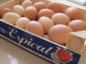 box of eggs 4-4-15