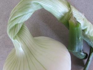 salad onion, whole 4-6-15