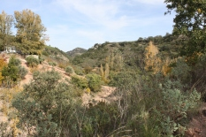 Jose antonio's valley - photo David 15-11-09 (2)