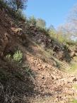 rock fall1 11-2-15
