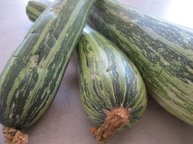 courgettes3 28-6-13 (2)