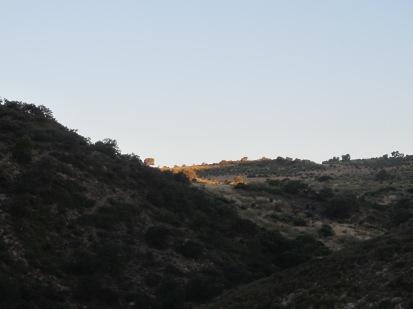 sunrise1 26-7-15