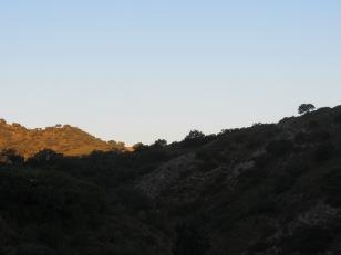 sunrise8 26-7-15