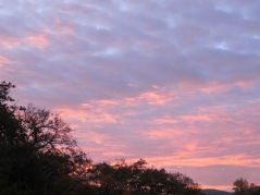 winter sunrise3 8-12-15