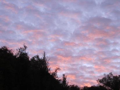 winter sunrise4 8-12-15