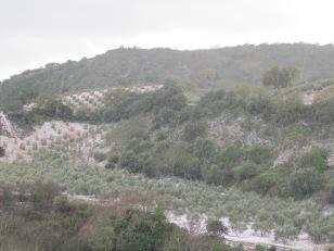 hail10 27-2-16