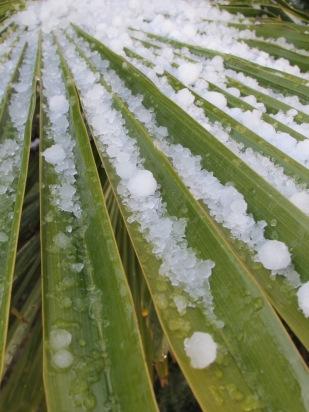 hail13 27-2-16