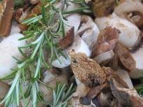 mushroom & herbs, adding pepper