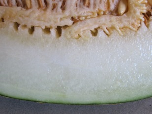 melon, sliced