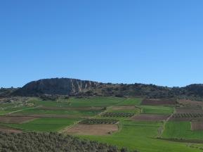green-brown-fields