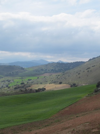 green-brown-hills