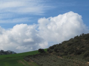 green-hillside-puffy-white-cloud