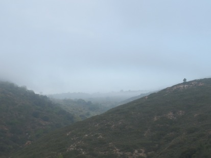 misty-valley1