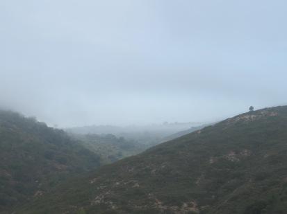 misty-valley1