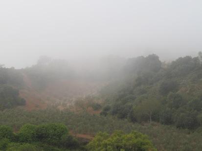 misty-valley12