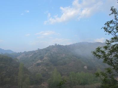 misty-valley15jpg