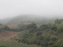 misty-valley4
