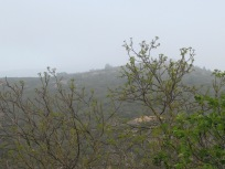 misty-valley5