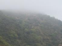 misty-valley6