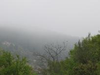misty-valley7