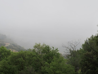 misty-valley9