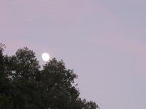 sunset4 + moon