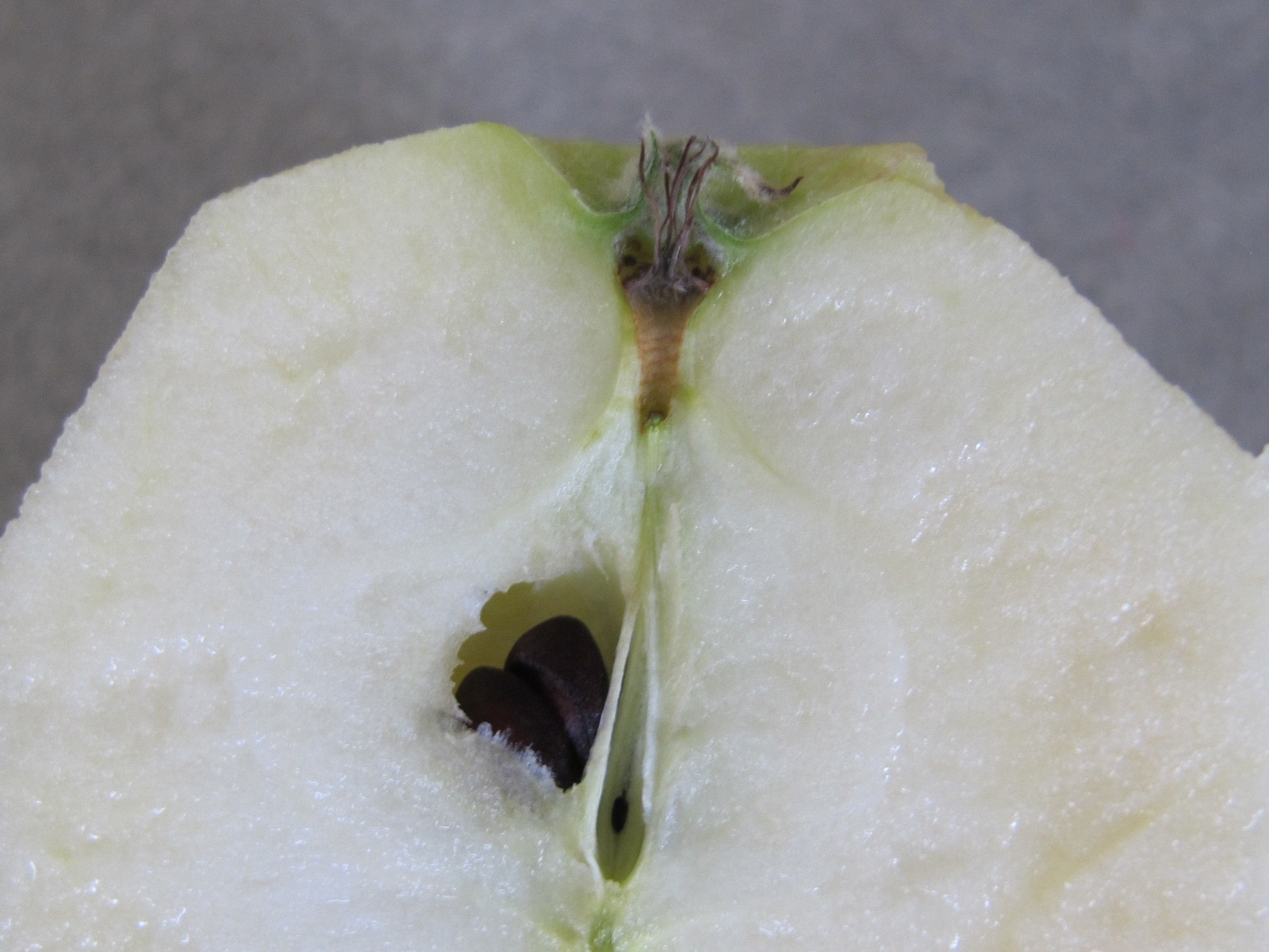 Bbc Apple And Cinnamon Cake