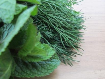 fresh-mint-dill