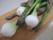 asparagus and salad onions1