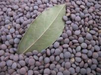 lentils & bay leaf