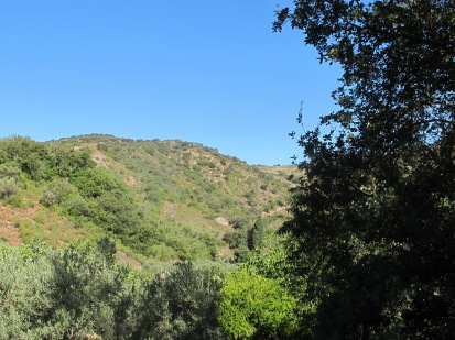 the valley, from the Almond Track