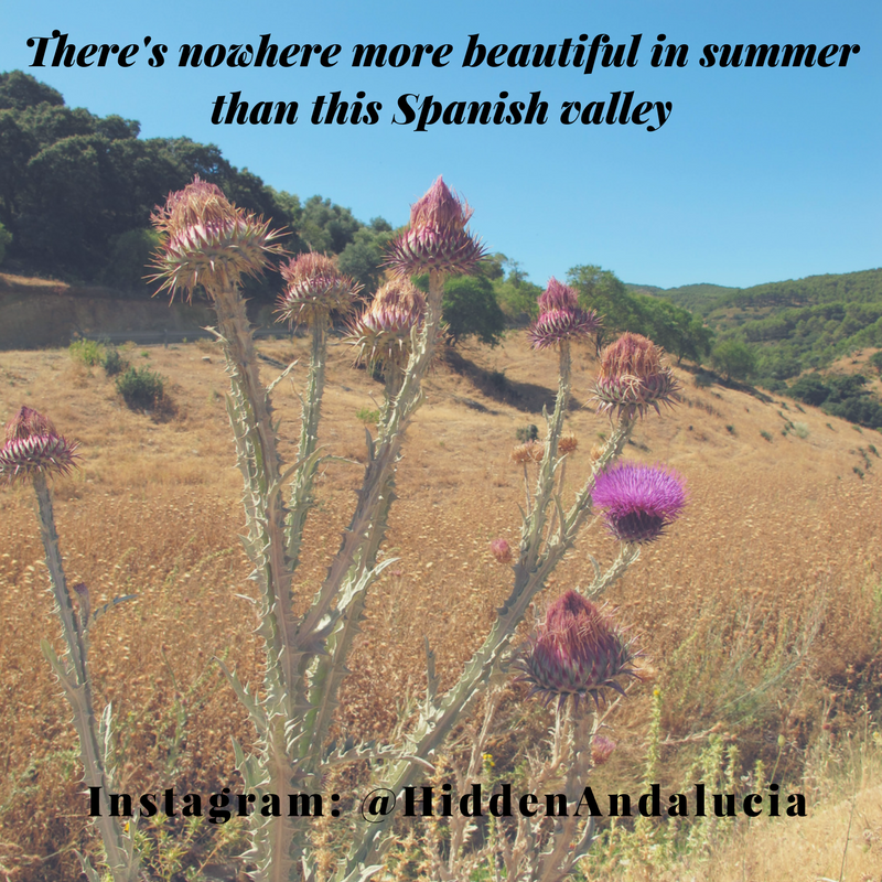 There S Nowhere More Beautiful Notes On A Spanish Valley