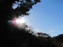 low sun