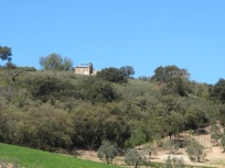 on the hillside