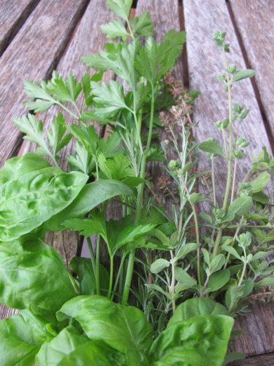 paste - freshly picked herbs