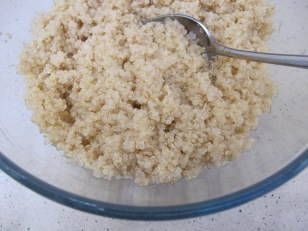 quinoa, cooked & cooling