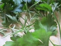 tapenade - rosemary & parsley