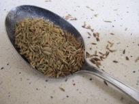 cumin seeds - photo @Spanish_Valley