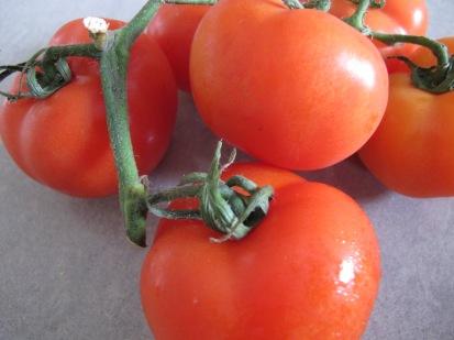 tomatoes - photo @Spanish_Valley