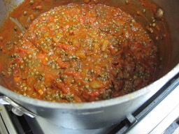 lentils & tomatoes cooking down - photo @Spanish_Valley
